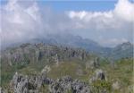 Alama Budaya17 2006
